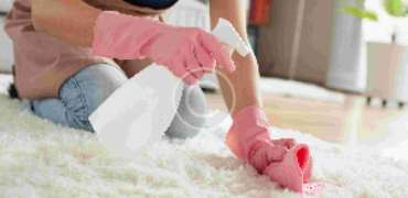 Pros, Cons and Costs: Carpet Cleaning